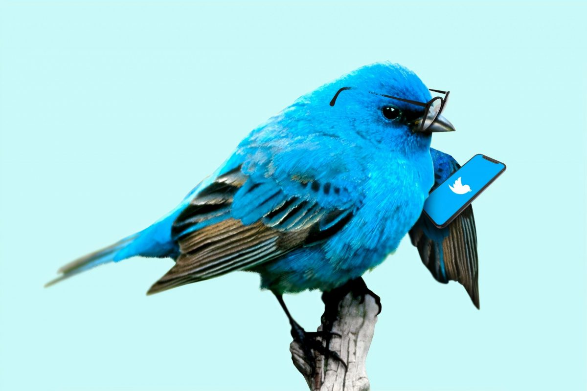 Twitter sanctionne le copier/coller